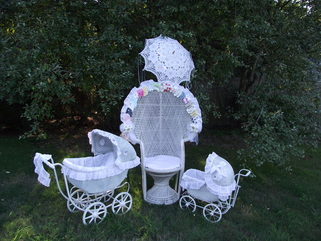 baby bridal shower rentals
